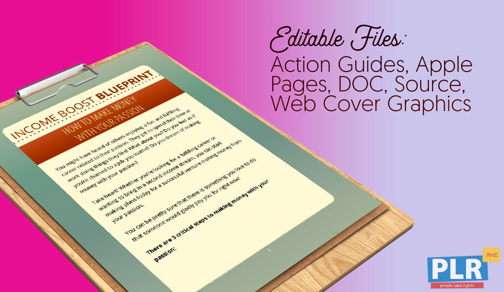 Plr action guides coaching handouts lead magnets income boost income boost blueprint how to make money with your passion malvernweather Images