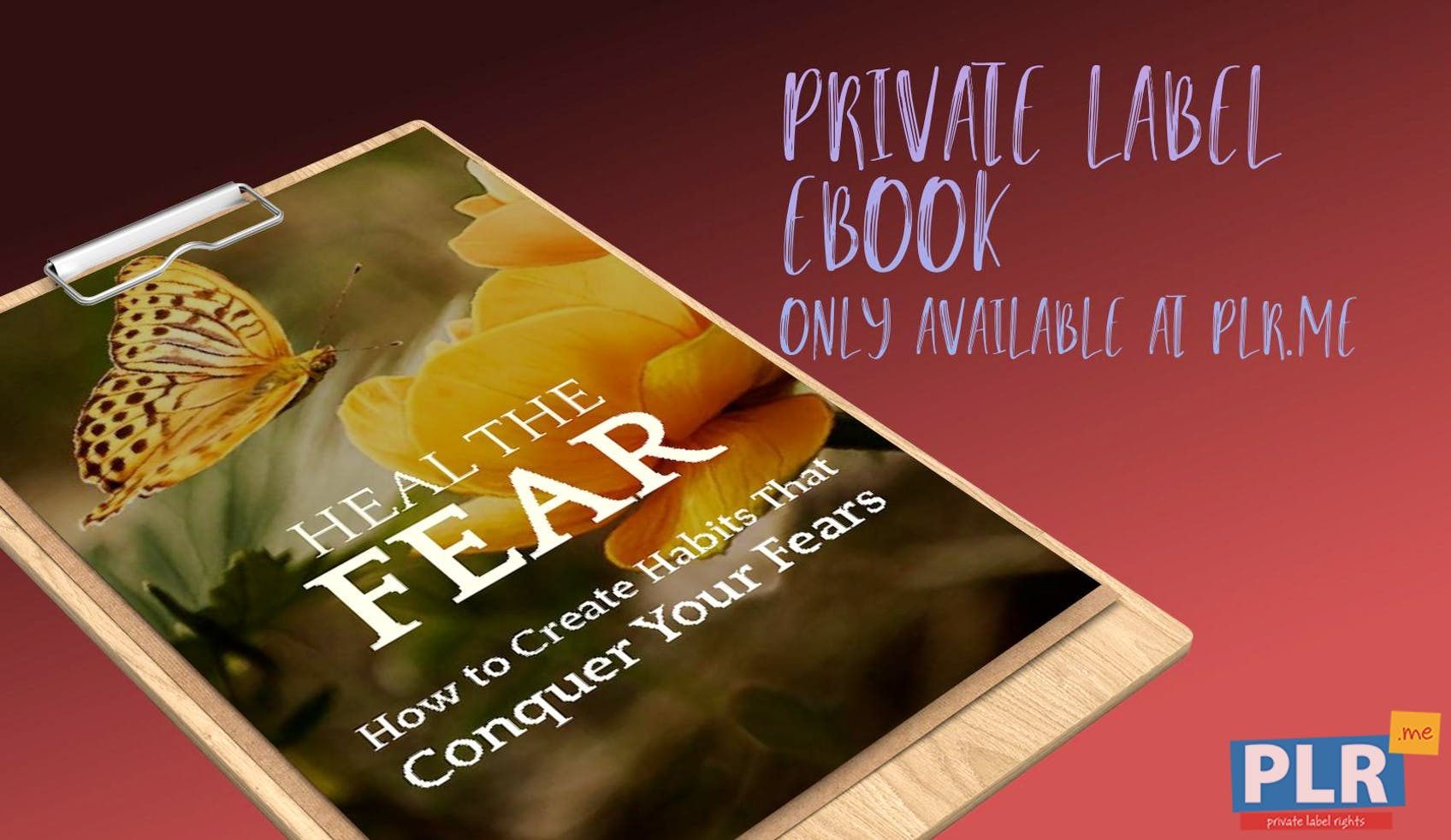 Heal The Fear How To Create Habits That Defeat Your Fears