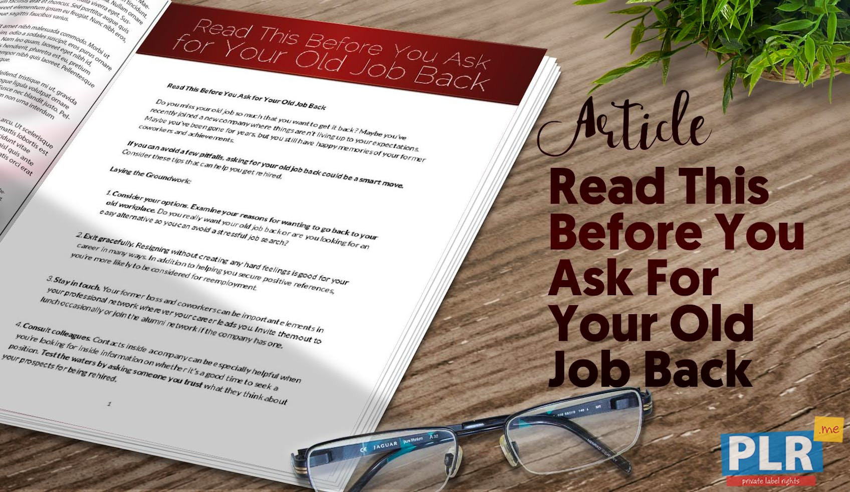 Read This Before You Ask For Your Old Job Back