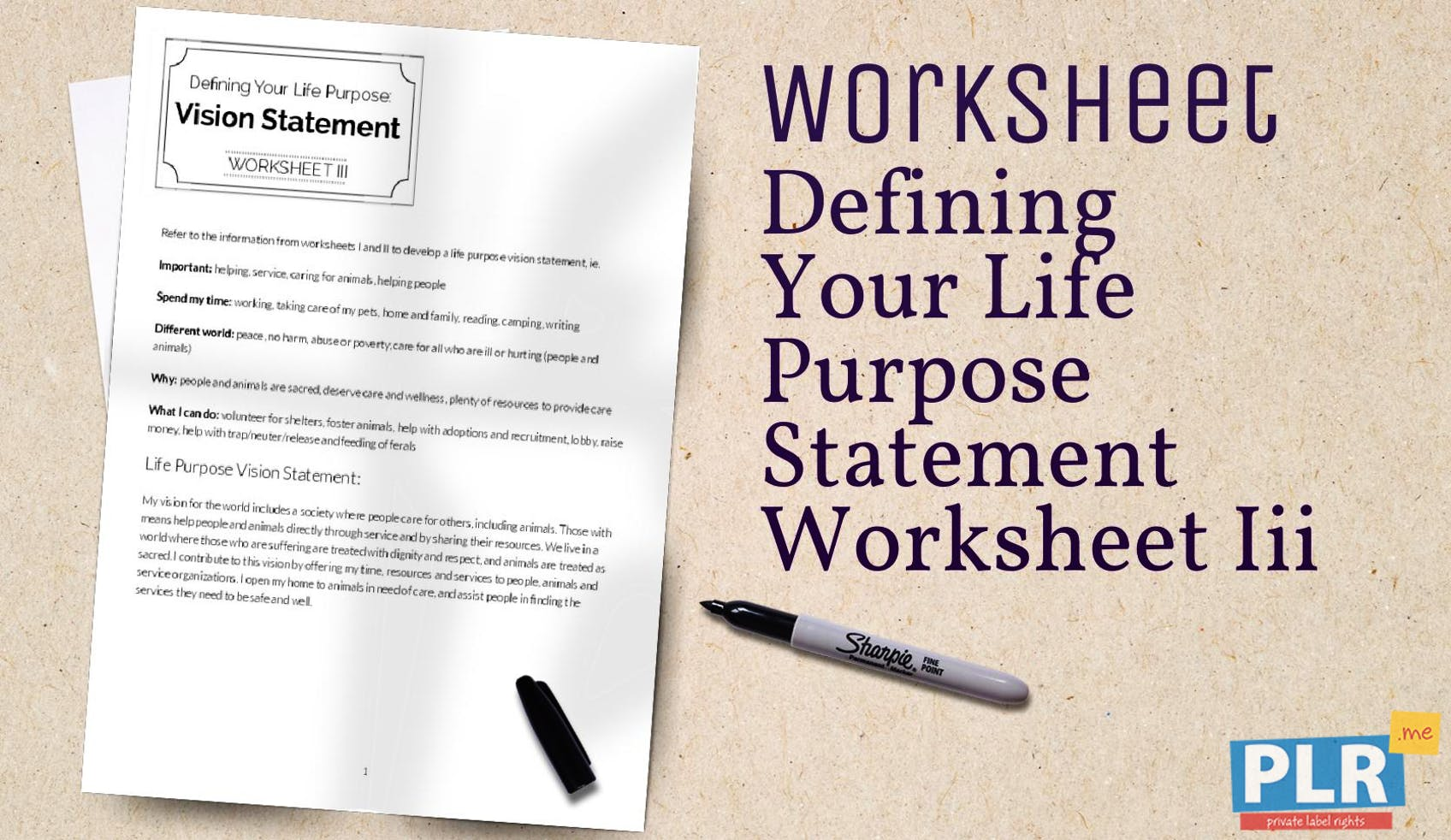 Plr Worksheets Defining Your Life Purpose Statement Worksheet Iii