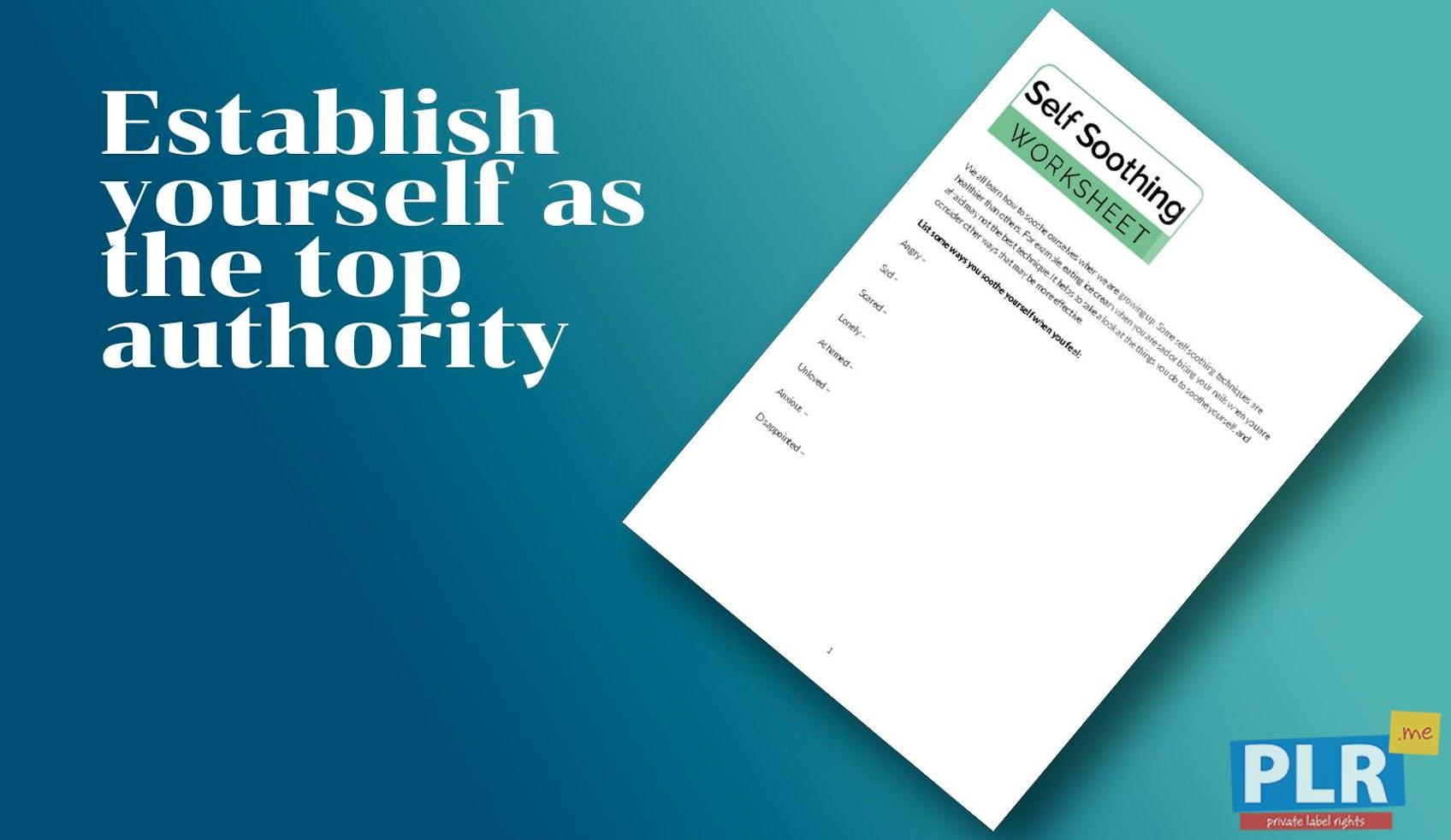 Self Soothing Worksheet