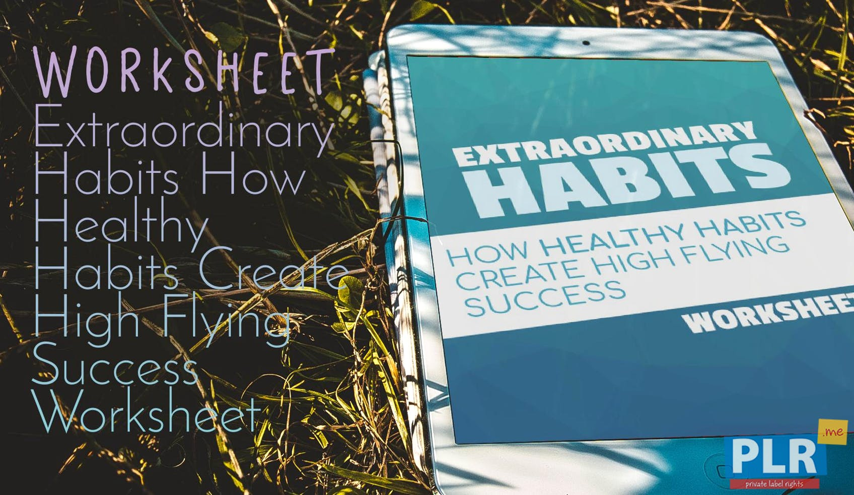 PLR Worksheets - Extraordinary Habits How Healthy Habits Create High ...