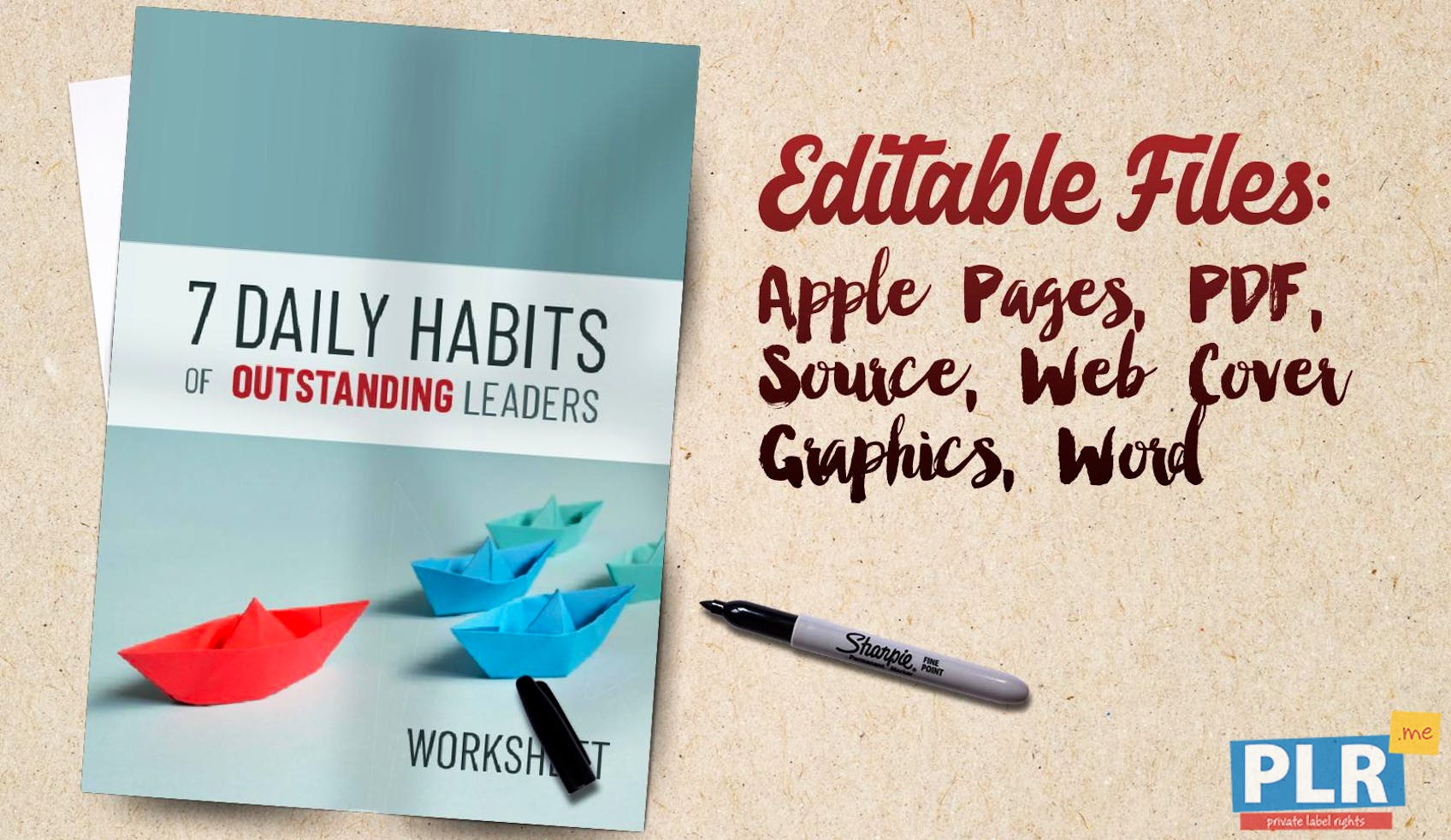 7 Daily Habits Of Outstanding Leaders Worksheet