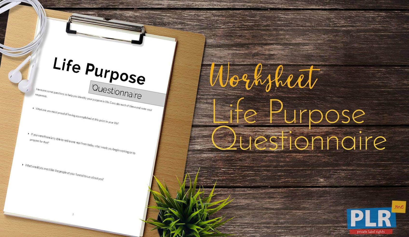 Life Purpose Questionnaire