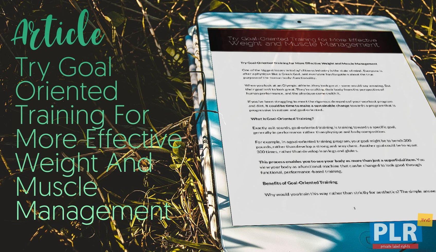 Plr Articles Blog Posts Try Goal Oriented Training For More