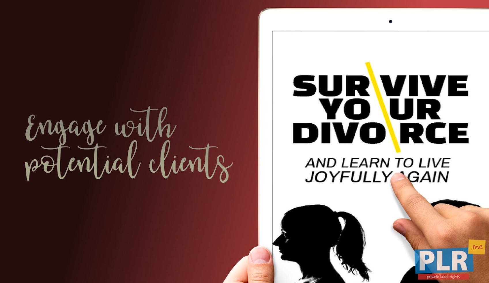 Survive Your Divorce And Learn To Live Joyfully Again