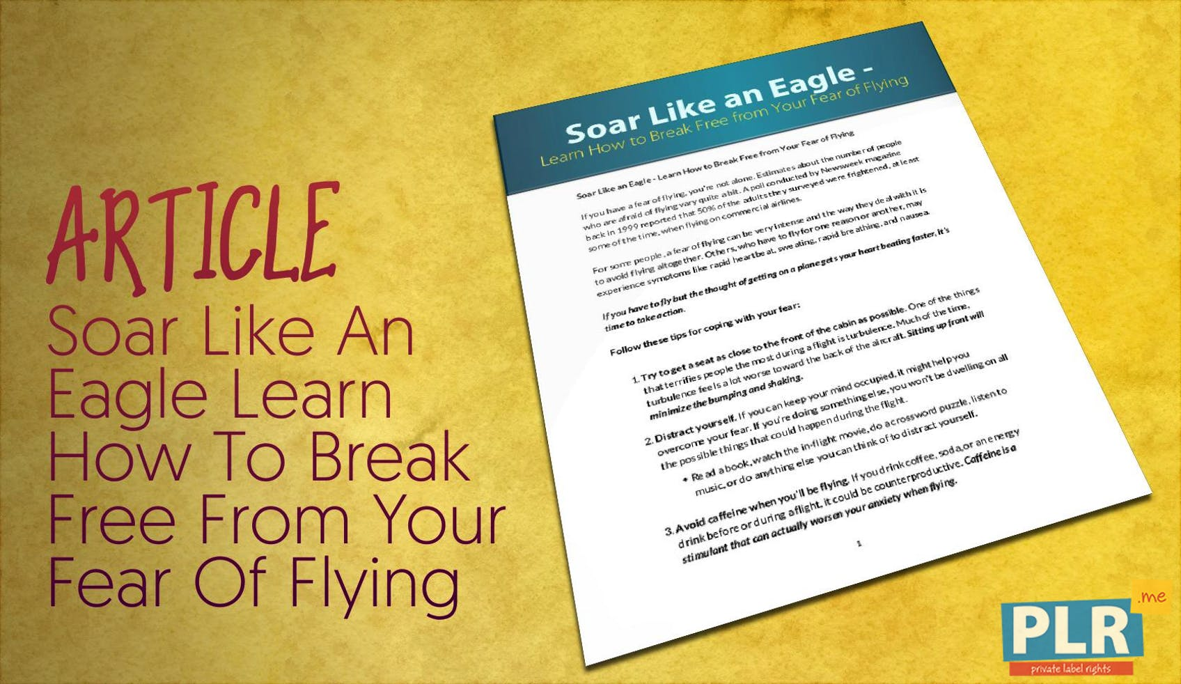 Soar Like An Eagle Learn How To Break Free From Your Fear Of Flying