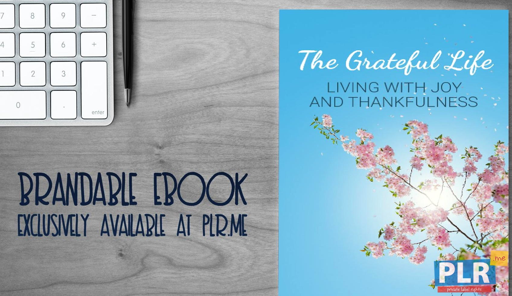 The Grateful Life - Living With Joy And Thankfulness