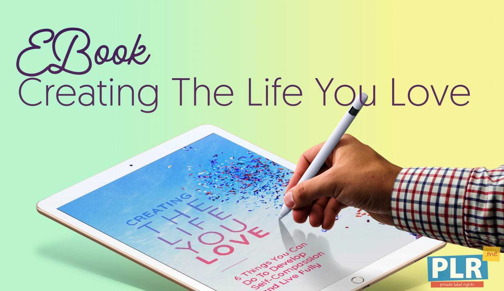 Creating The Life You Love