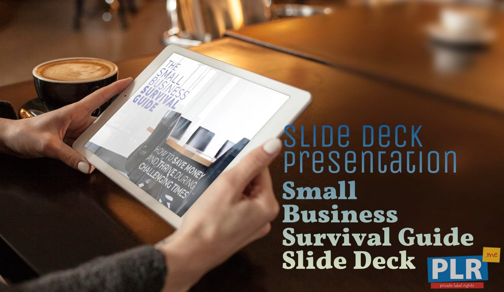 Small Business Survival Guide Slide Deck