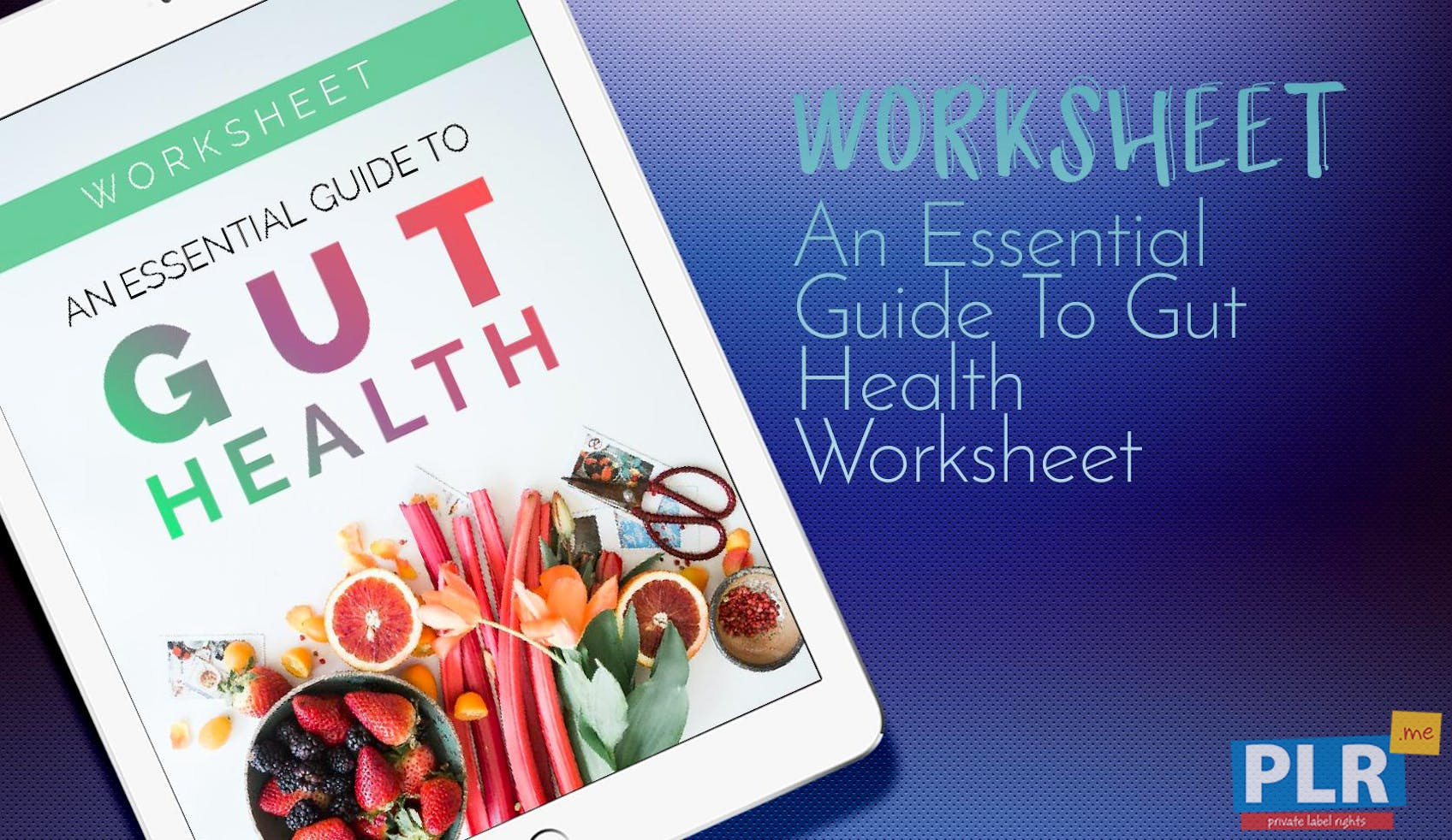 An Essential Guide To Gut Health Worksheet