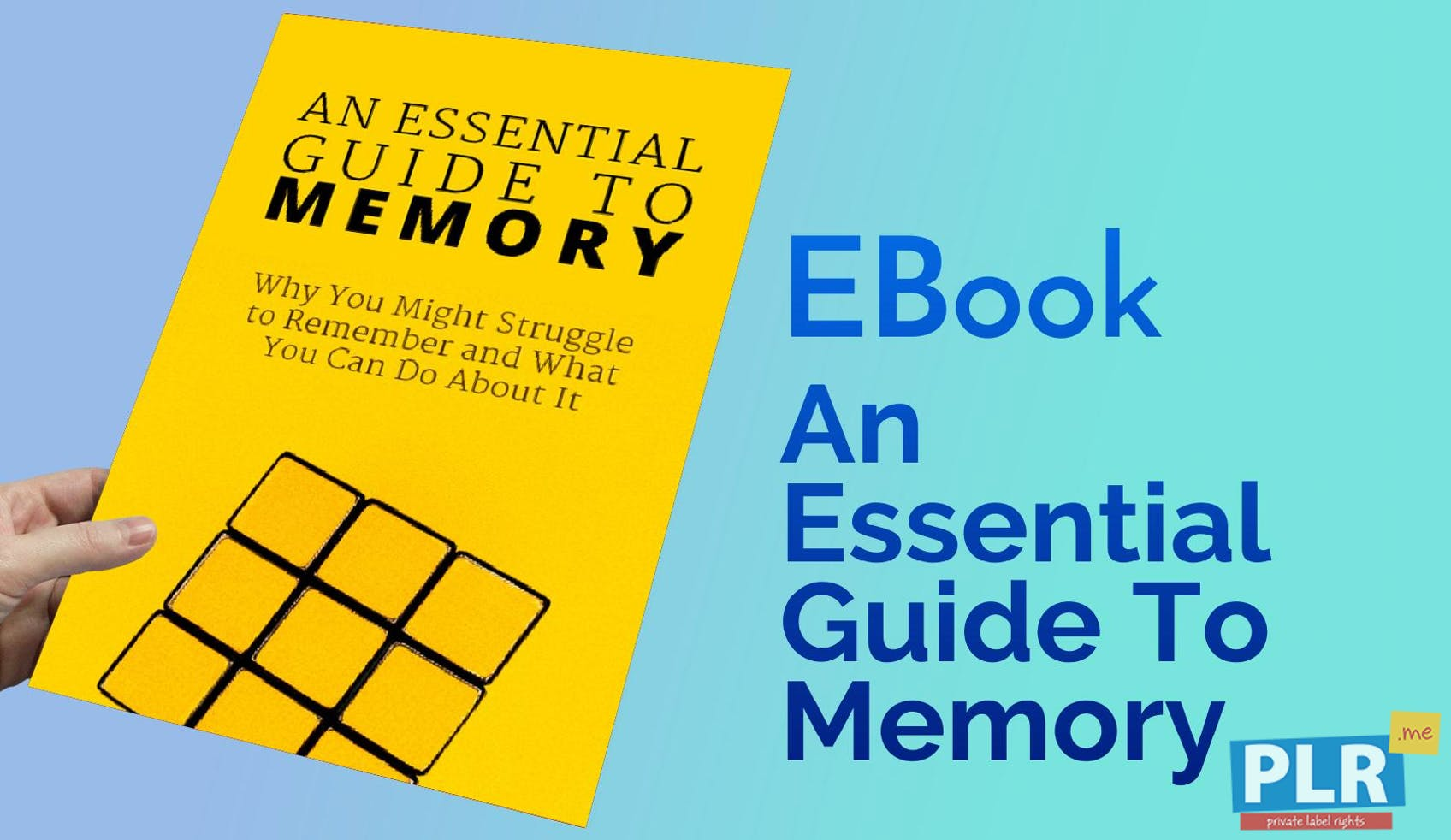 An Essential Guide To Memory