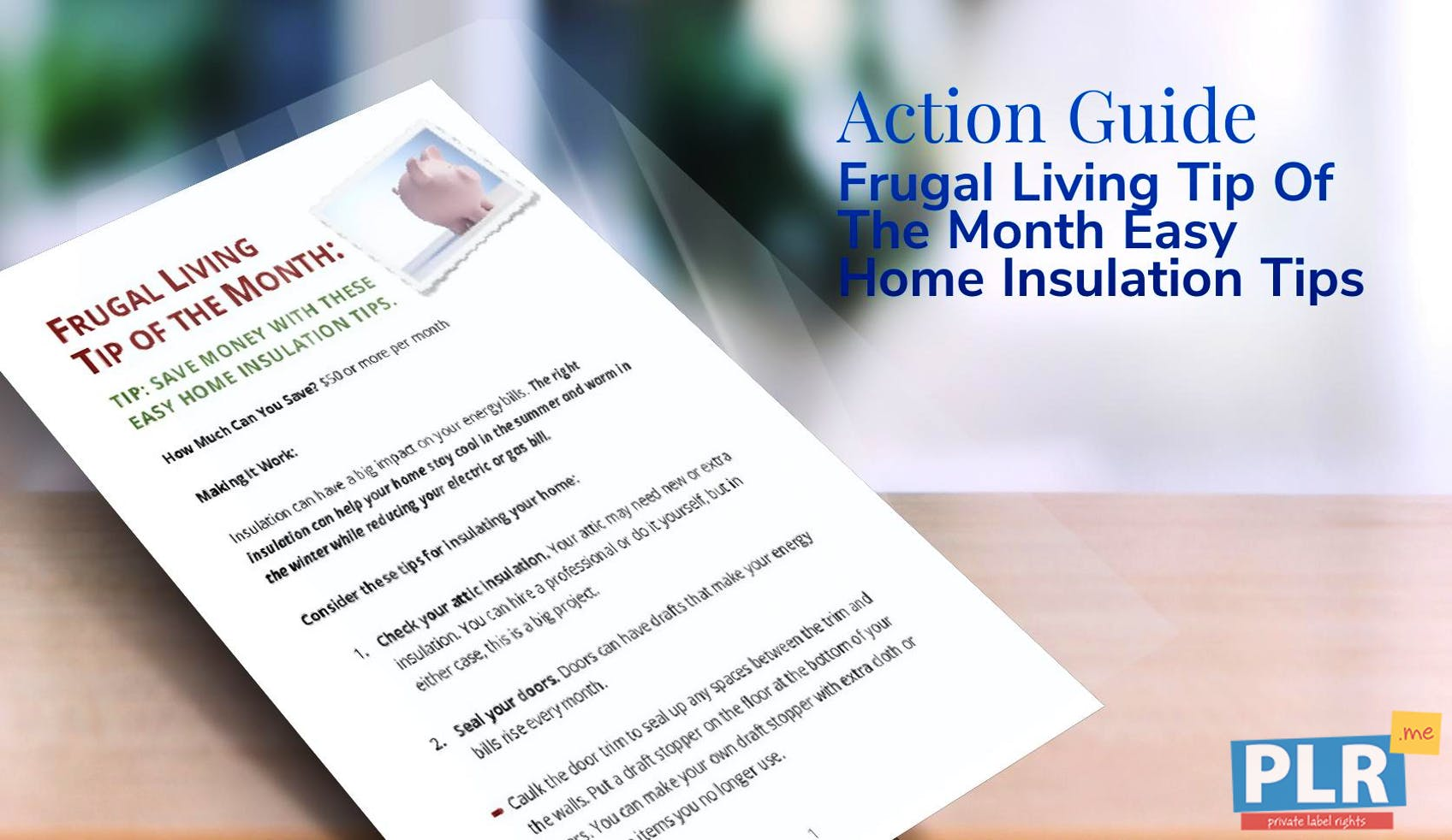 Plr action guides coaching handouts lead magnets frugal living frugal living tip of the month easy home insulation tips solutioingenieria Choice Image