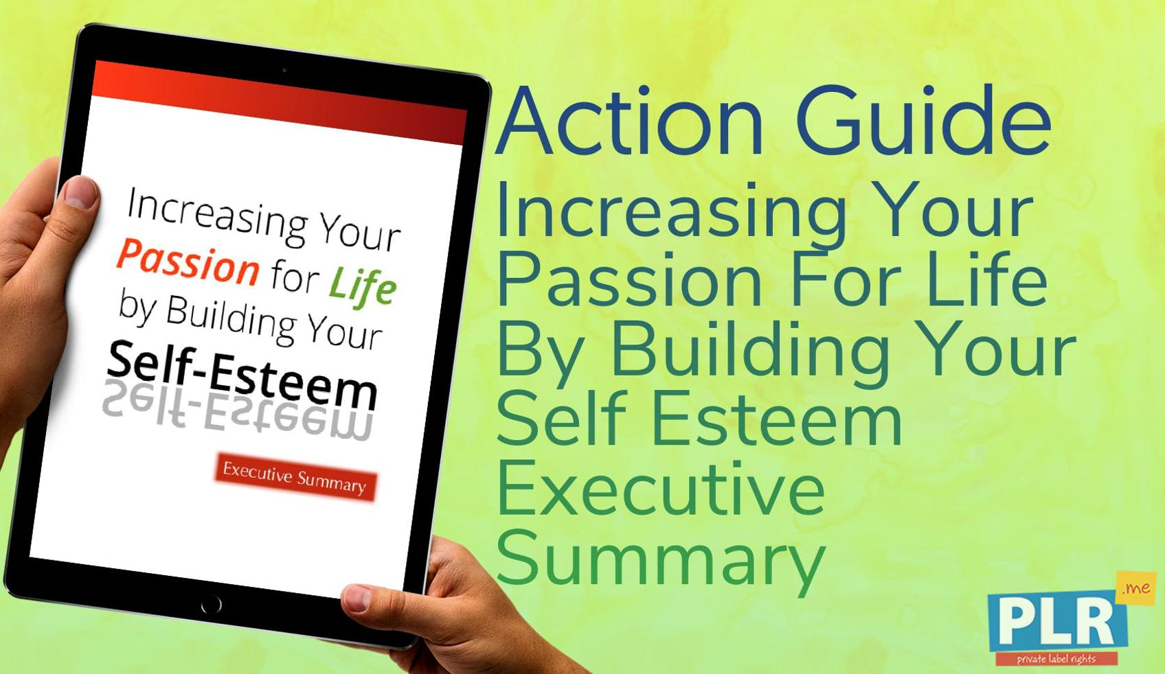 Increasing Your Passion For Life By Building Your Self Esteem Executive Summary