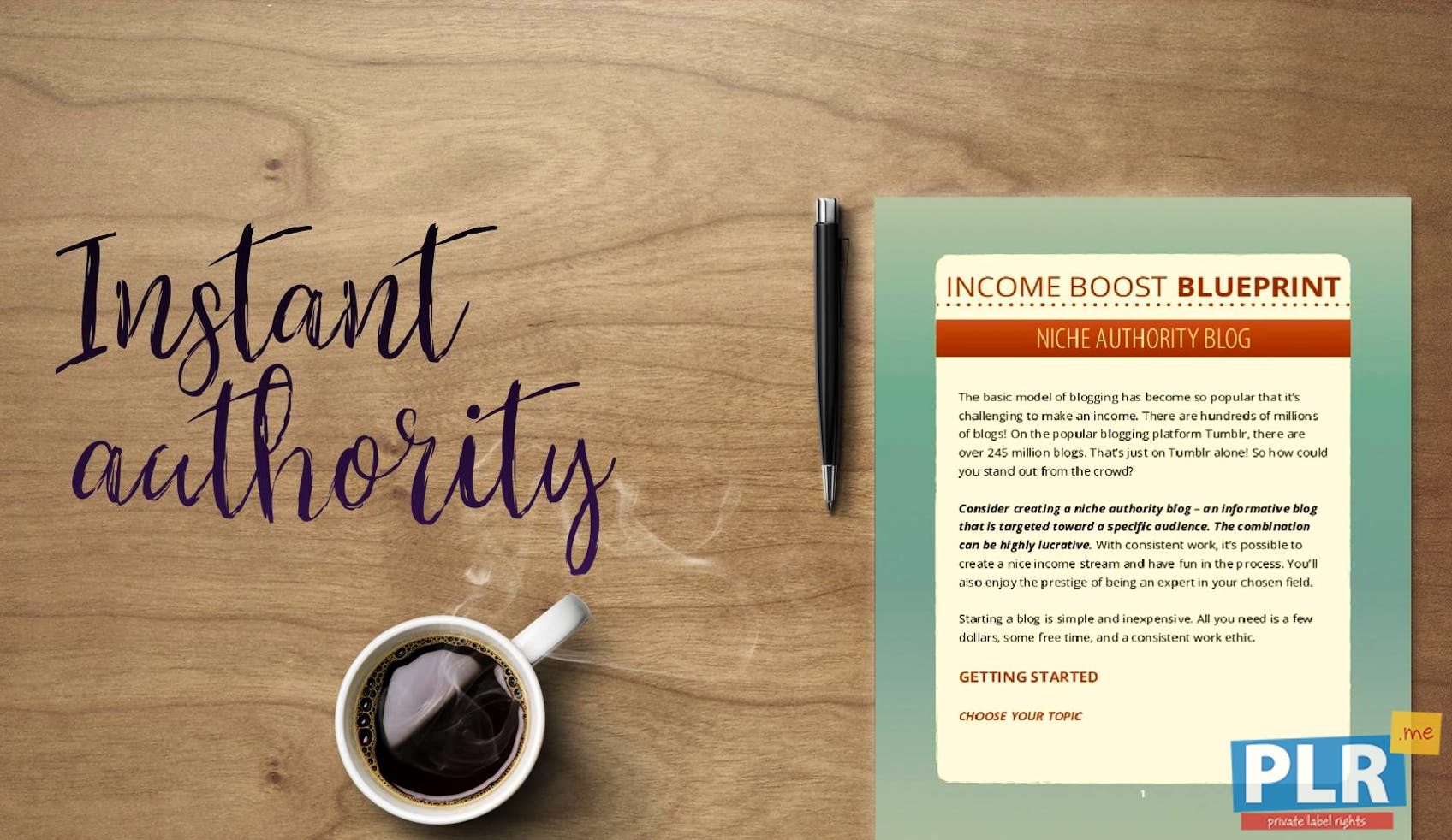 Income Boost Blueprint Niche Authority Blog