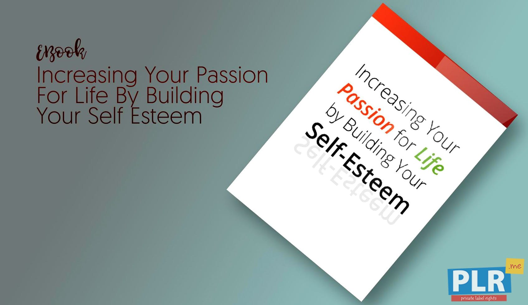 Increasing Your Passion For Life By Building Your Self Esteem