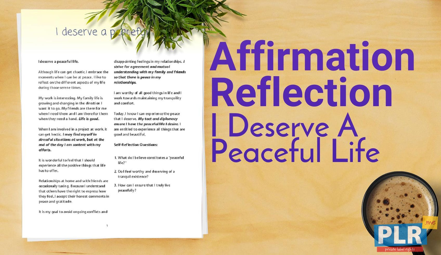 I Deserve A Peaceful Life