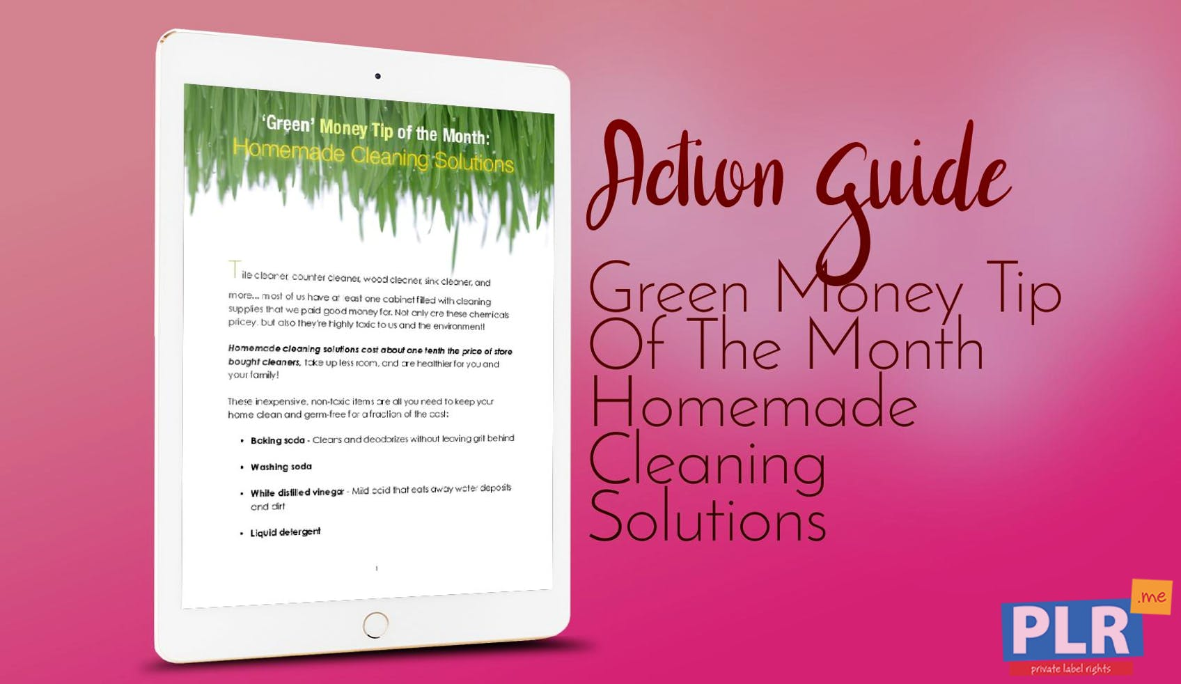 Green Money Tip Of The Month Homemade Cleaning Solutions