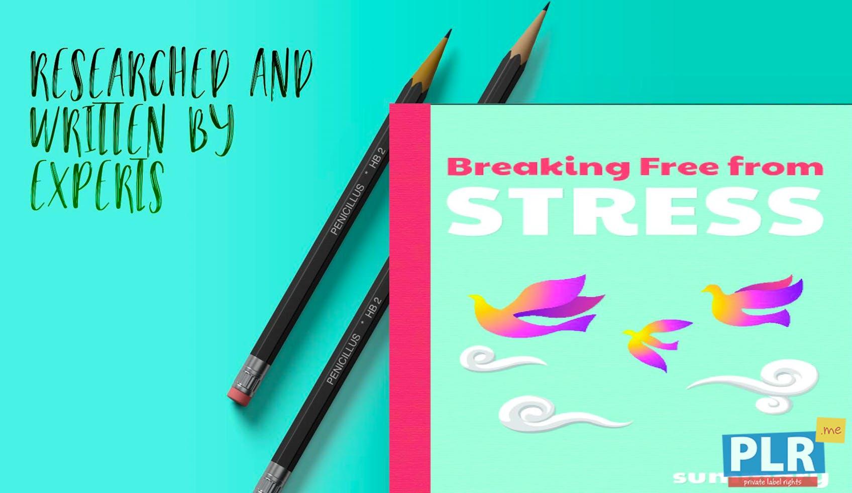 Breaking Free From Stress Executive Summary