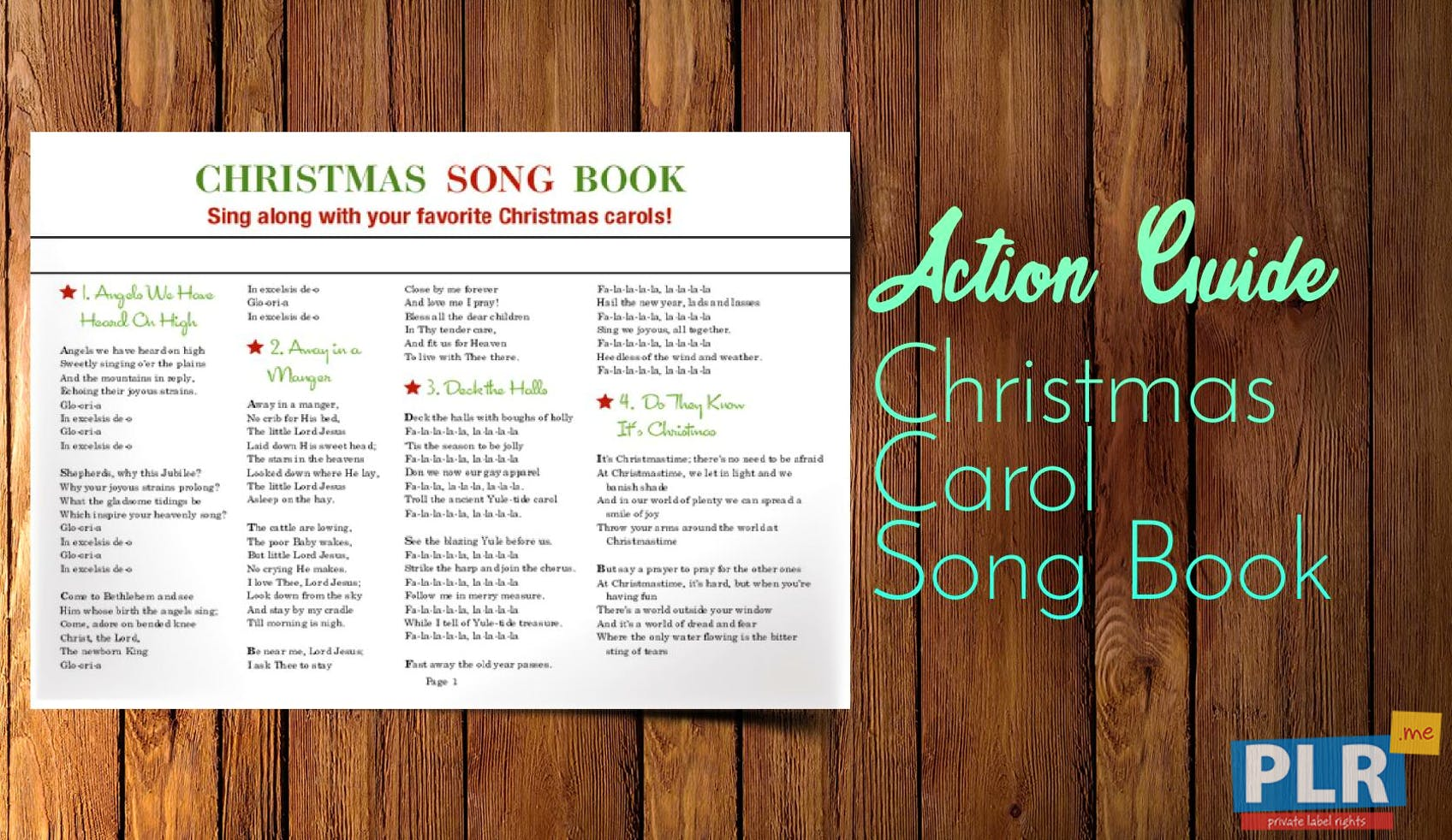 PLR Action Guides, Coaching Handouts & Lead Magnets - Christmas ...