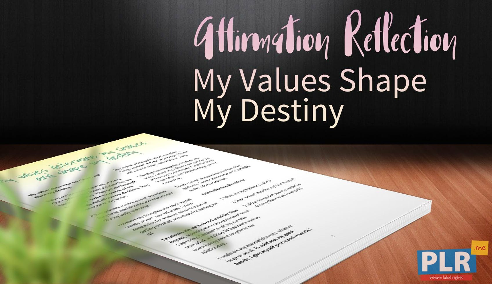 My Values Shape My Destiny