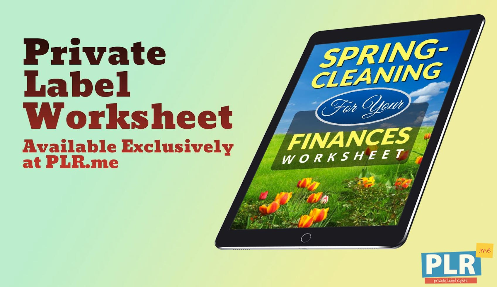 Spring Cleaning For Your Finances Worksheet