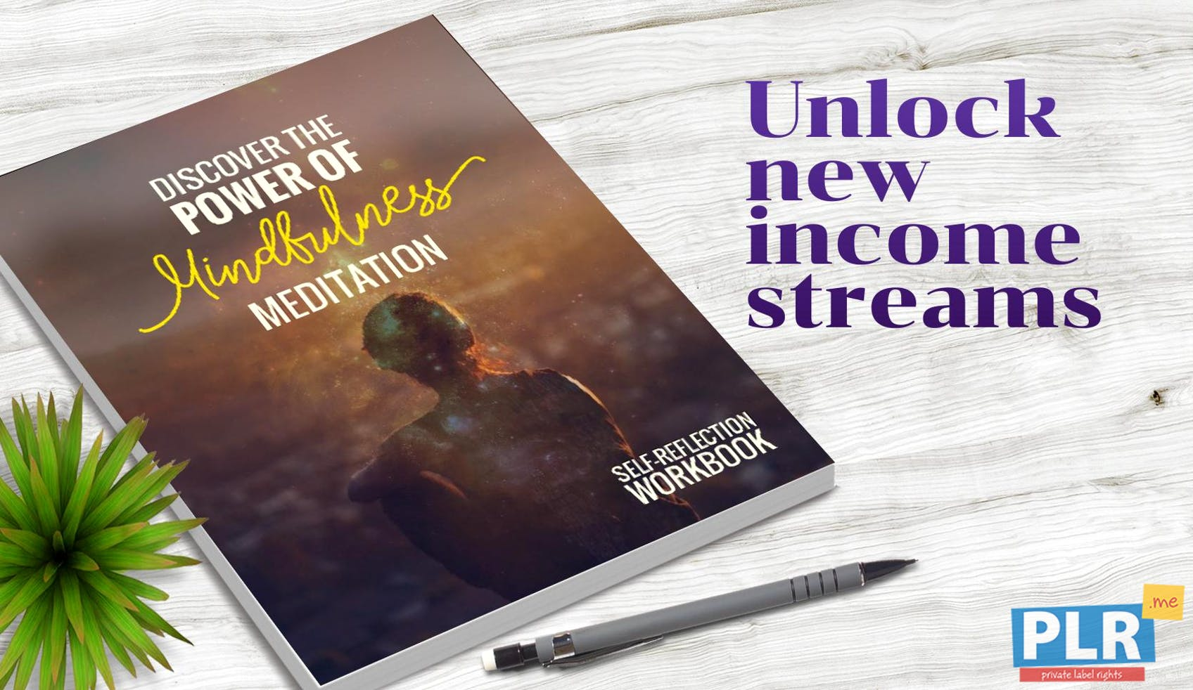 Discover The Power Of Mindfulness Meditation Workbook