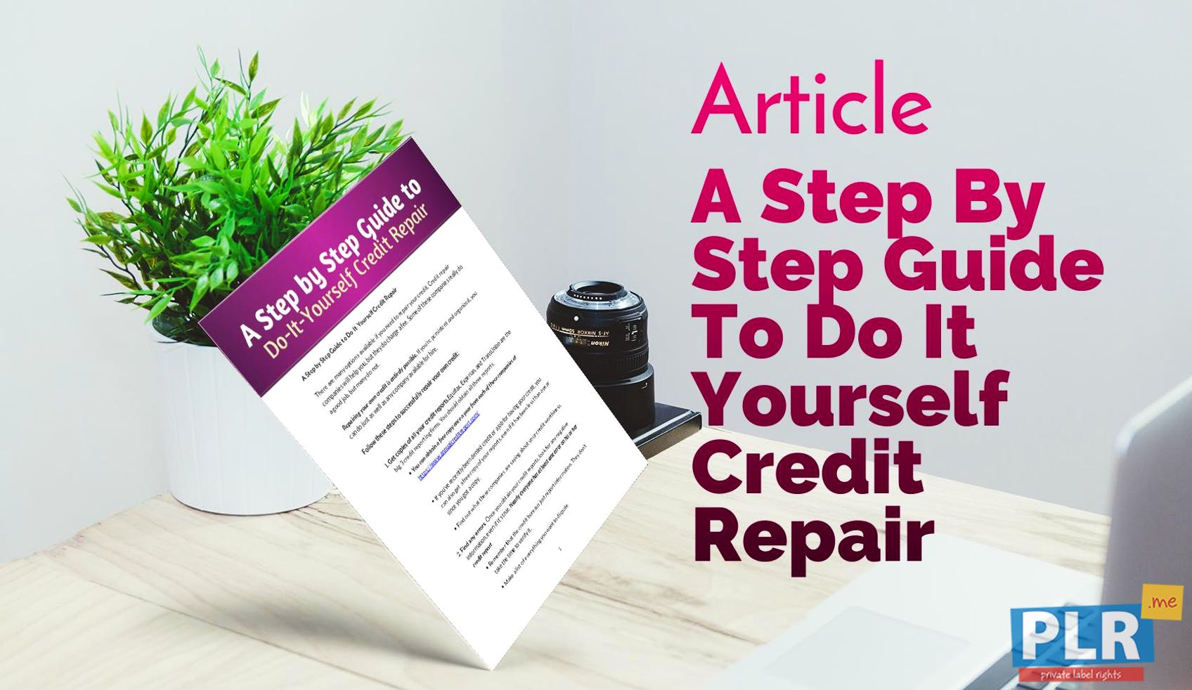 Plr articles blog posts a step by step guide to do it yourself a step by step guide to do it yourself credit repair solutioingenieria Image collections
